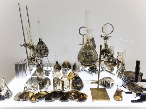 Laboratorio, 2011-2013 / Gelatin, silver prints on glass, nickel plated metal devices and LED light panel / Dimensions variable