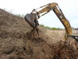 Migrant, 2010-2013 / Extracción de raíces utilizadas en la obra mediante proceso de fundición en bronce